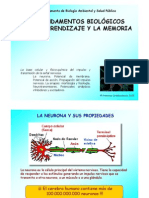 3-LA NEURONA.pdf
