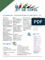 Revista luna noiembrie 2013.pdf