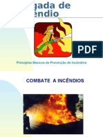 6397608-Combate-a-Incendios-2.pdf