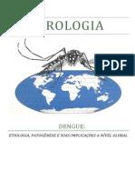 APRESENTAÇÃO DE VIROLOGIA_DENGUE.pdf