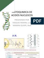 HISTOQUIMICA DE ACIDOS.pptx