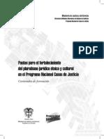 pautas_pluralismo.pdf