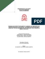 tesiiiiiiiiiiiiiiiiiiiiiiiiiiiiiiiiiiiiiiiiiiiissssssssssssssssss final.pdf