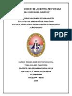 BOLSAS PLASTICAS.docx
