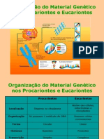 07organiza--o do material gen-tico nos procariontes e eucariontes.ppt