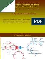 ICS 055 Aula 2  Vias Anabólicas e gliconeogenese 2009.ppt