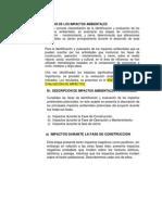 ANÁLISIS DE LOS IMPACTOS AMBIENTALES.docx