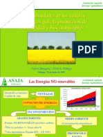 ponencia5_cultivosenergeticos.ppt