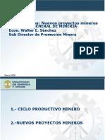 Nuevos Proy de inversion SNMPE.ppt