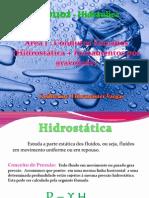 RápidaRevisão.pdf