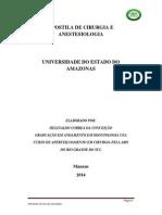 CIRURGIA E ANESTESIOLOGIA.pdf