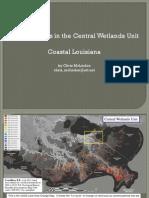 Central Wetlands Unit Subsidence
