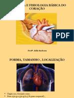 Anatomia - revisão