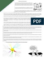 Animals and Intelligence Xiia Handout