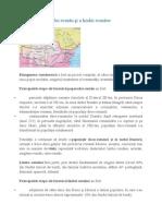 Formarea poporului român şi a limbii.doc
