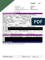 Dallas/Fort Worth Brawl Police Report