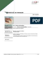481039_Técnico-a-de-Informática---Sistemas_ReferencialEFA.pdf