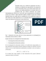 Fundamentos Cromatografía de Intercambio Iónico