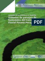 Inventario Humedales Parana Paraguay