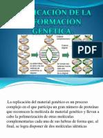 Replicacion de la informacion genetica