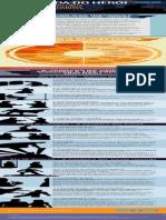 [Viver de Blog] Infográfico Jornada Do Herói