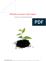 Biochar Carbon Negative
