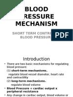 bloodpressuremechanism-100423102316-phpapp01