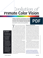 Evolution Color Vision Primates17
