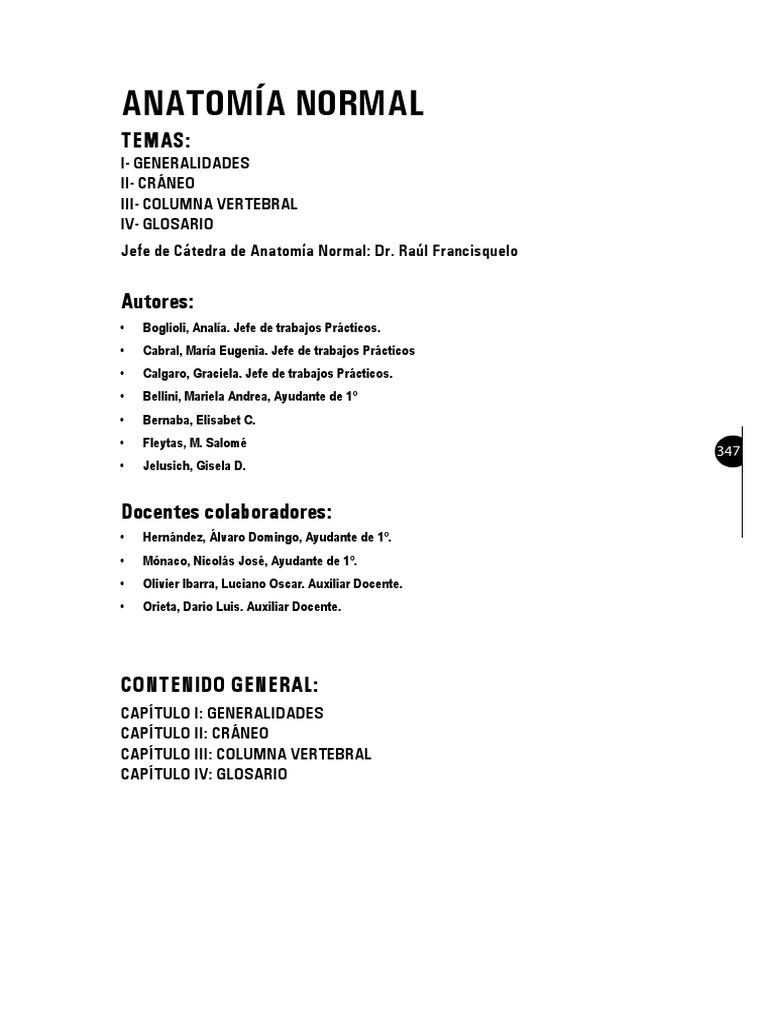 anatomia-pdf