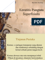 presentasi BST - keratitis pungtata.pptx