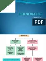 Bioenergtika Ys