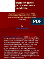 Chronic Respiratory Disease (CRD)