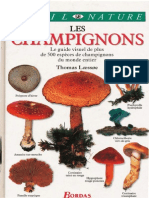 Les Champignons by Thomas Laessoe
