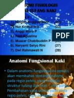 Anatomi Fisiologis Pada Tulang Kaki