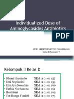 Individualized Dose of Aminoglycosides Antibiotics