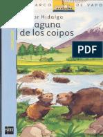 Laguna de Coipos
