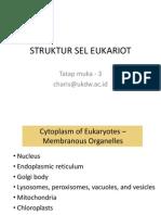 Tatap Muka 3-3 -2-Struktur Sel Eukariot-charis 2014
