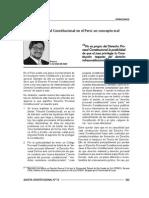 Renzo Cavani - Derecho Procesal Constitucional en el Perú