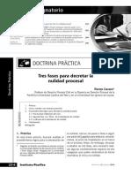 Renzo Cavani - Tres fases para decretar la nulidad procesal
