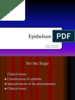 Epithelium I 2014 D2L
