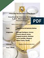 Informe 2 Bacterias Lacticas