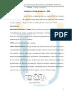 luis_100413_13_resumen - copia.docx