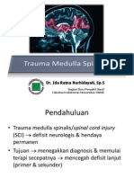 Trauma Medulla Spinalis