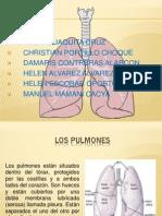 Diapositiva Del Pulmon