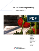 Report Strawberry Cultivation Plan (Final)