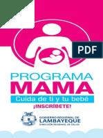 Díptico Programa MAMA