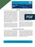 Frame. Tamaño - Estructura Corporal en Vacunos