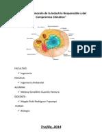 informe 3 biologia