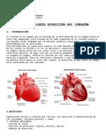 Práctica Corazón