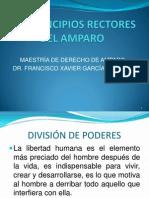 Los Principio s Rector Es Del Amparo